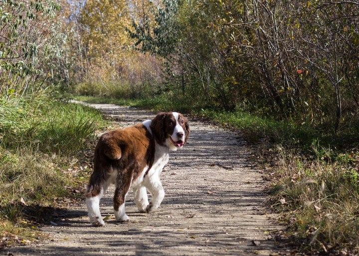 Sadie-bioreserve-oct2 - Copy